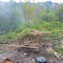 Čiščenje okolja in priprava novega pašnika