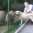 Nash in Matjaž ob neznanih živalih :-) NASH:''Pa sem vam reku, da je eno samec...ta drugo