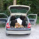 Najprej smo Jona posedli v avto...