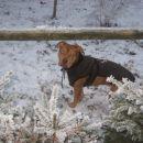 uiiiiii snegec