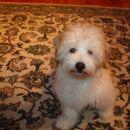 Casper pri petih mesecih