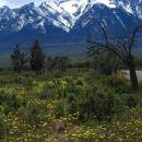 Sierra Nevada v ozadju