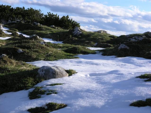 Svež sneg na Kompoteli
