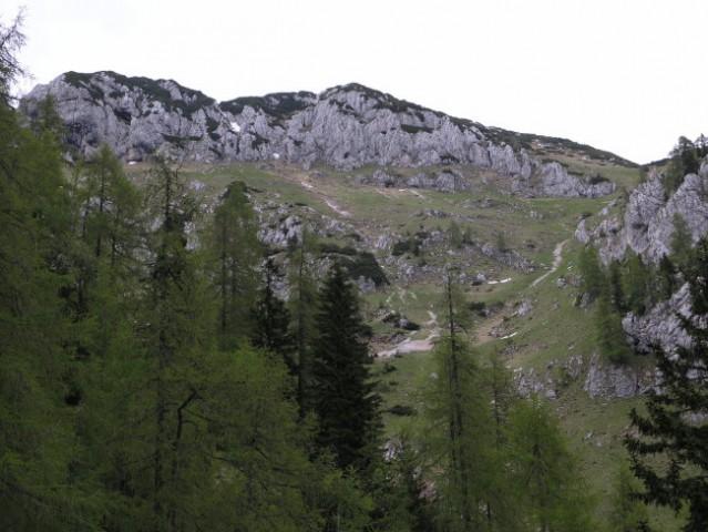 Mokrica