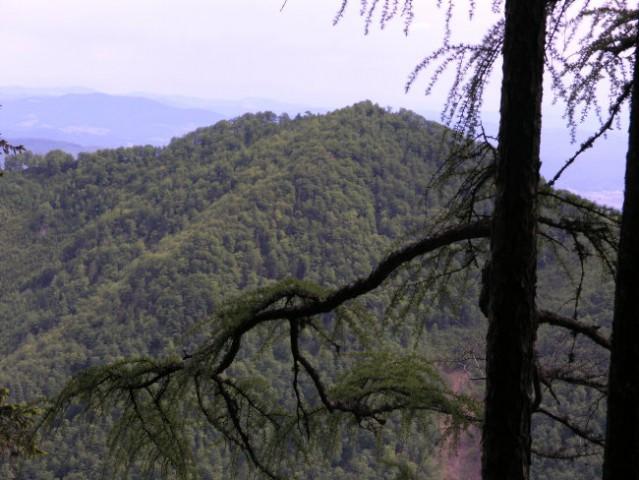 Kosmatinec - gorski obraz kaže le proti jugu