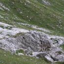 svizec - stražar; drugi so se ob njegovem pisku poskrili v luknje