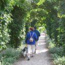 sprehod po grajskem vrtu