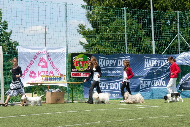 1. samostojna tekma v JUNIOR HANDLINGU  21.6. - foto povečava