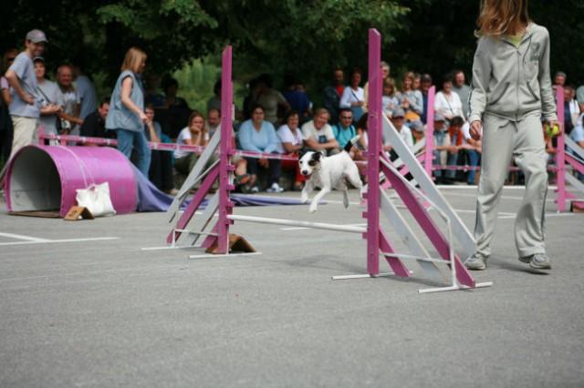 Furmanski praznik 2006 - foto