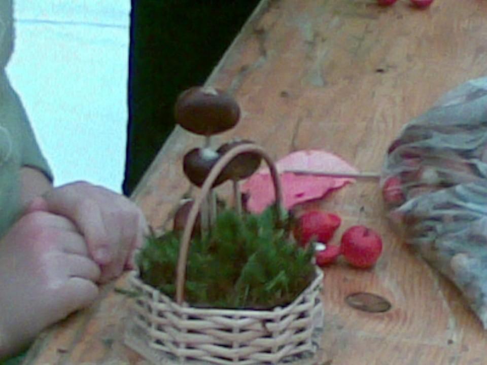 Kostanjev piknik 2008 - foto povečava