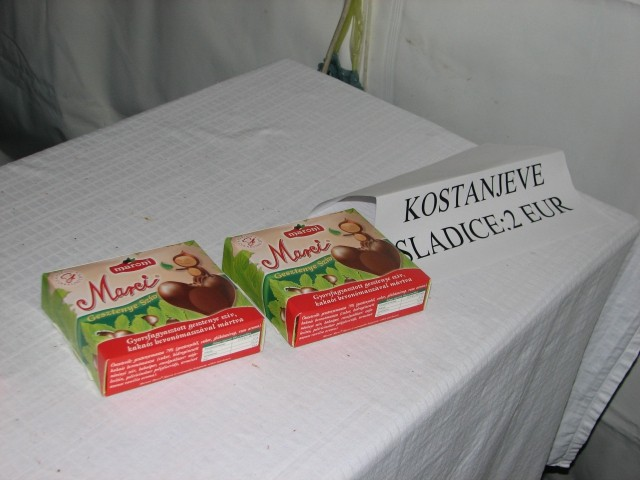 Kostanjev piknik 2008 - foto