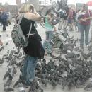 ptičja gripa napada