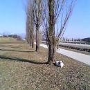 TA sončen zimski dan ...