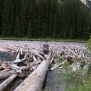 Duffey Lake