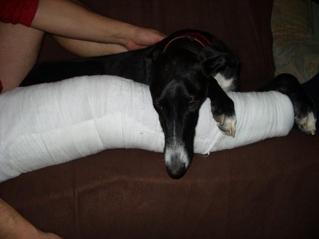 Chef dela družbo bolniku z izpahnjenim kolenom, ki ga je skasiral pri igri nogometa s Chef