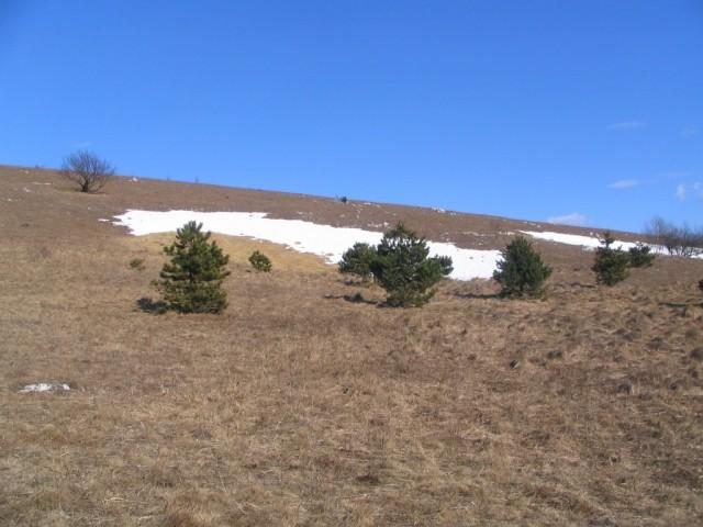 Sneg in Vremščica - foto