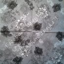 sivi 12