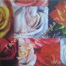vrtnice 175