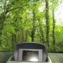 Pogled iz avta