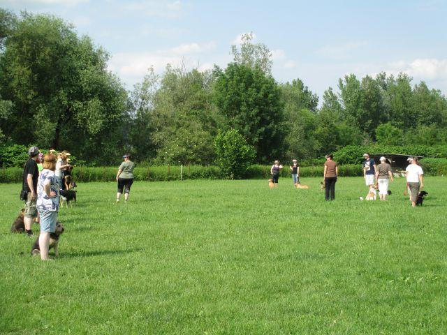 Piknik ob koncu šole - foto