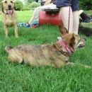 Miži in Lexi