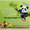Otroška stenska nalepka panda na vejici