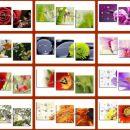 Stenske slike -tisk na um.platno (vzorci)