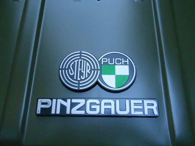 Pinzgauer Projekt - foto