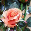 Umetne vrtnice, kala in gipsofila vejice