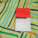 P: The Catcher in the Rye in No Soy un Libro