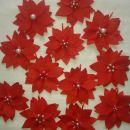 travnik božičnih zvezd