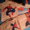 spiderman 4e