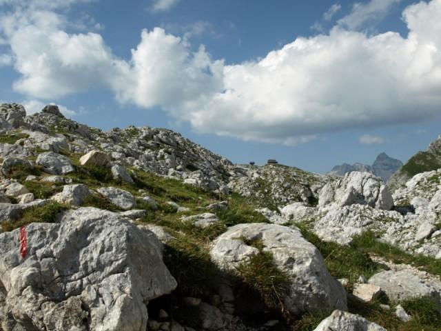 Dolina Trig. 2013 - foto