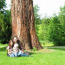 Družinska fotografija pod stoletnim drevesom.