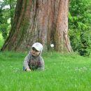 Pri mogočnem drevesu v Botaničnem vrtu.