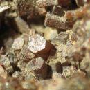 moji minerali