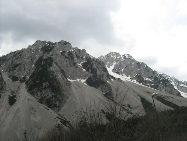 Specijalka Austrija, Cacib Klagenfurt2008. - foto