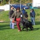 Kimba Black Wind of Varaždin - Junior Club Winner, BIS Junior
