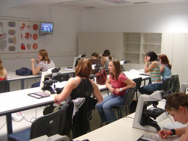 Medicinska fakulteta - foto povečava