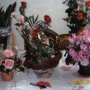 Rože in narava