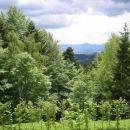 Prečudovit pogled iz našega Pohorja.