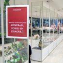 Razstava Slovenika - 7 vitrin z minerali in fosili