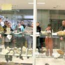 Vodena predstavitev za novinarje - vitrine z minerali in fosili