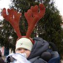 mladi jelenček na sprehodu po Kamniku!