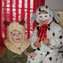 medvedek in dalmatinka