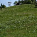 Zgornji del smučišča Španov vrh