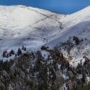 Pot na vrh Golice