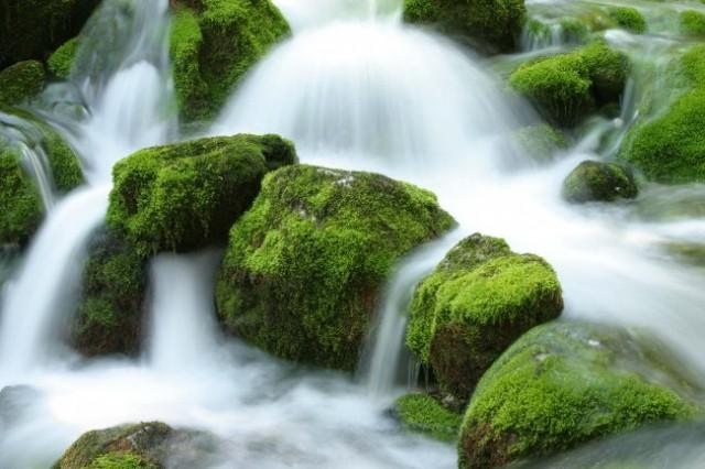Ekosklad - foto