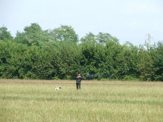 Tekma ptičarji Coseano 2008 - foto