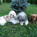 Tampico, Kajči & Michelle, ki zeha  ;)